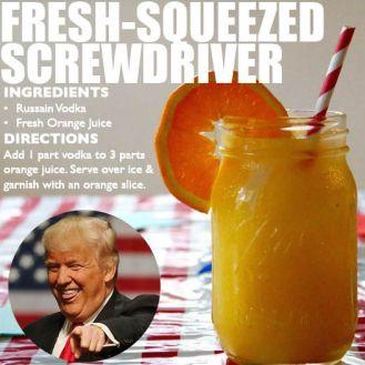 screwdriver-recipe